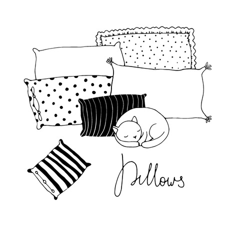 siesta: Beautiful pillows and cute cat on a white background. Hand drawn vector.