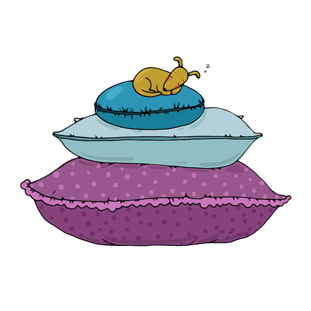 lapdog: Beautiful pillows and dog on a white background. Cushions. Hand drawn vector.