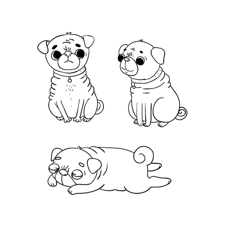 Cute Pugs. Dogs. Hand drawing isolated objects on white background. Vector illustration. Illustration