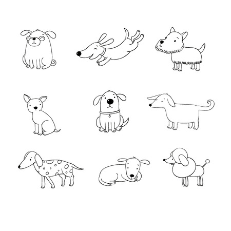 quick drawing: Set of funny cartoon dogs. Hand drawing isolated objects on white background. Vector illustration. quick sketch. Illustration