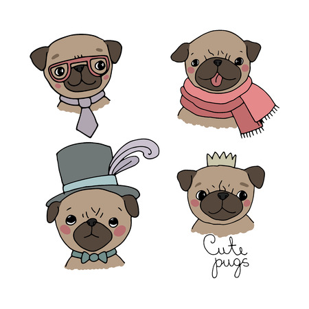 Set of little pugs. Cute animals. Vector illustrations
