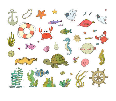 Big set of marine. Sea theme. Cute cartoon turtle starfish, funny fish, jellyfish and sea horse, seaweed and a bottle with a note. Vector. Illustration