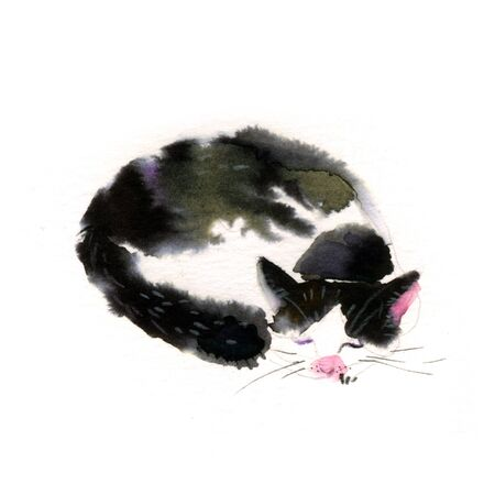 Cute watercolor cat on a white background. Hands drawn kitten illustration - Stock fotó