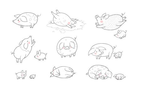 Set with cute cartoon pigs. Farm animals. Pig in different poses