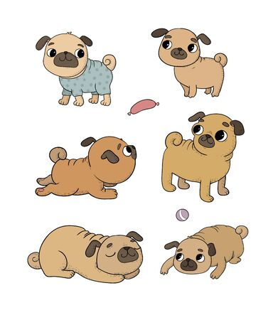 Cute cartoon pug set. Cheerful funny dog picture for the veterinarian. Vector