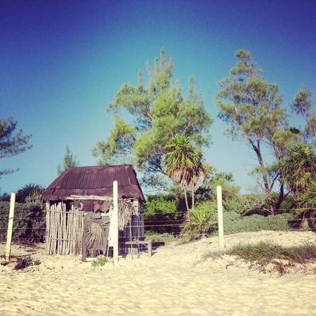 shack: Beach Shack