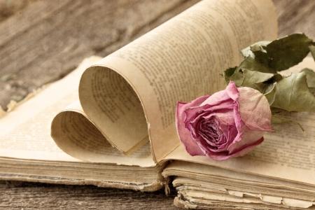 ビンテージ スタイルの古い本で乾燥したローズ