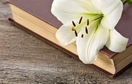 White lily on the book on the old wooden background Standard-Bild