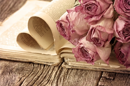 Dry roses on an old book in a vintage style photo
