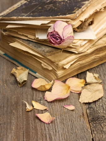 Dry rose and old books on a wooden background