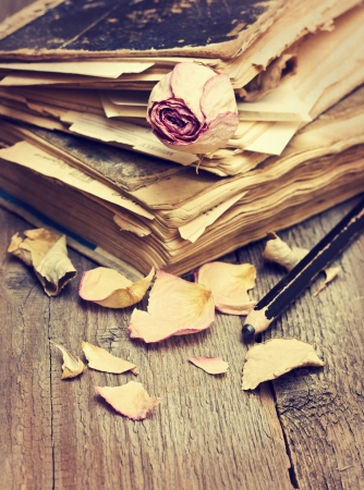 Dry rose and old books on the old grungy wooden background photo