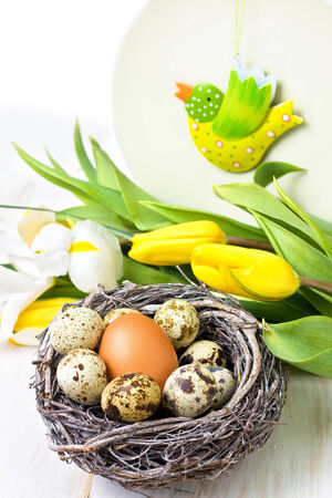 Easter decoration with chicken and quail eggs, tulips photo