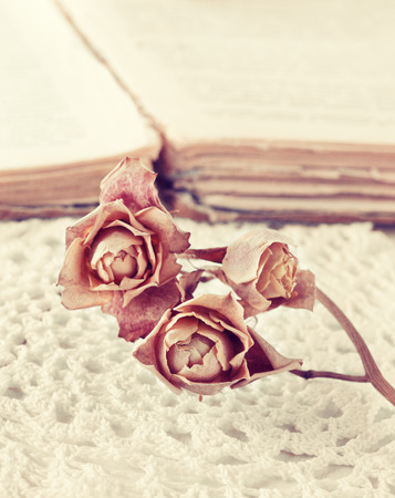 dry rose on the book in vintage style Stock Photo