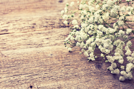 bouquet of gypsophila on a wooden background (Toning) 스톡 콘텐츠