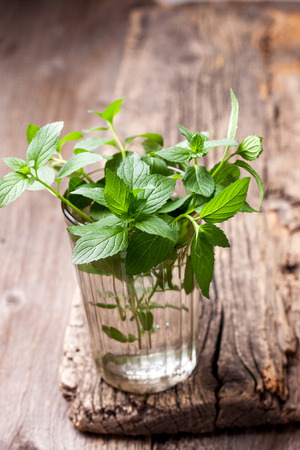 branches of mint in a glass on old wooden background