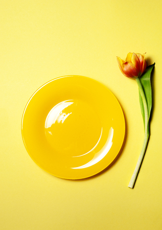 Empty plate and tulip on yellow