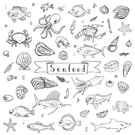 salmon fillet: Hand drawn doodle Seafood icons set Vector illustration seafood symbols collection Cartoon fish Crab Seafood platter Lobster Oyster Shrimp Shellfish Shrimp on white background for your menu or design