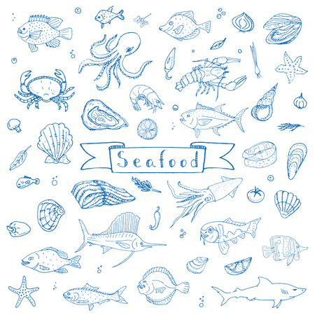 Hand drawn doodle Seafood icons set Vector illustration seafood symbols collection Cartoon fish Crab Seafood platter Lobster Oyster Shrimp Shellfish Shrimp on white background for your menu or design