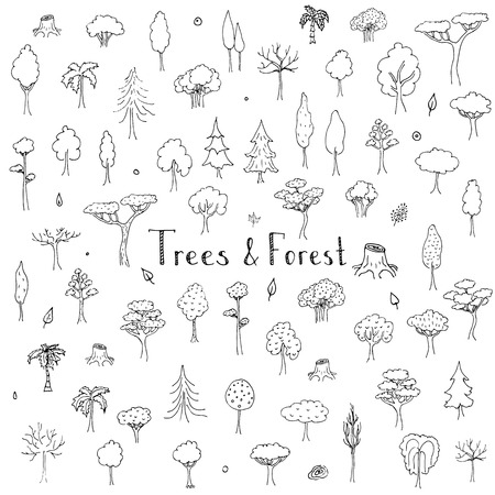 Hand drawn doodle Trees and Forest set Vector illustration tree icons Forest concept elements Tree isolated silhouette symbols collection Nature Forest clipart design Leaf Fir Ever green Branch Stump Vettoriali