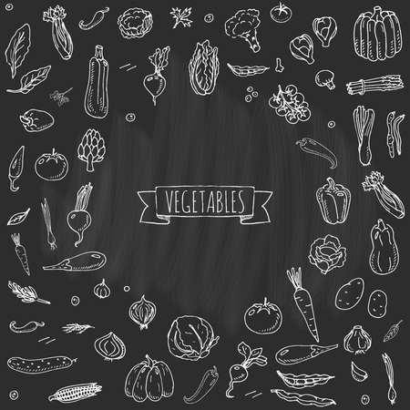 Hand gezeichnet Doodle Gemüse Icons Set Vektor-Illustration saisonale Gemüse Sammlung Symbole verschiedene Arten von verschiedenen Arten von Gemüse Gemüse auf weißem Hintergrund Sketchy Stil