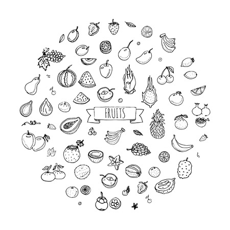 apple green: Hand drawn doodle fruits icons set Vector illustration seasonal fruits symbols collection Cartoon different kinds of fruits Various types of tropical fruits on white background Sketch style Fruit