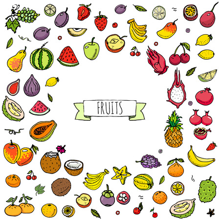 apple clipart: Hand drawn doodle fruits icons set Vector illustration seasonal fruits symbols collection Cartoon different kinds of fruits Various types of tropical fruits on white background Sketch style Fruit