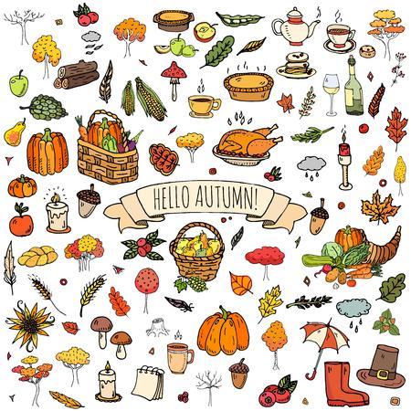 Hand getrokken pictogrammen doodle herfst set. Vector illustratie. Fall inzameling van symbolen. Vaus Cartoon seizoensgebonden elementen: turkije, oogst, groenten, pompoentaart, bladeren, bomen, warme thee, wijn, paddestoelen