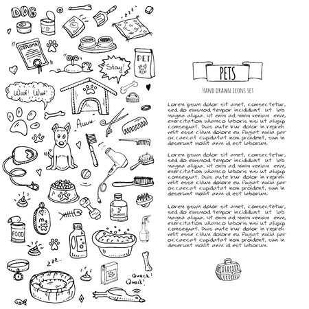 grooming: Hand drawn doodle Pets stuff and supply icons set. Vector illustration. Vet symbol collection. Cartoon dogs care elements: kennel, leash, food, paw, bowl, bone and other goods for pet shop