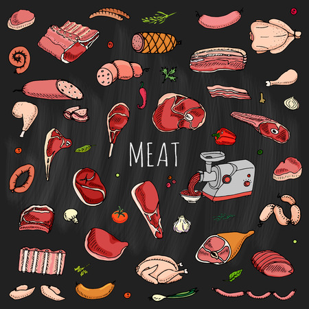 roast lamb: Hand drawn doodle set of cartoon different kind of meat and poultry. Vector illustration set. Sketchy food elements collection: Lamb, Pork, Ham, Mince, Chicken, Steak, Bacon, Sausage, Salami, Veggie. Illustration
