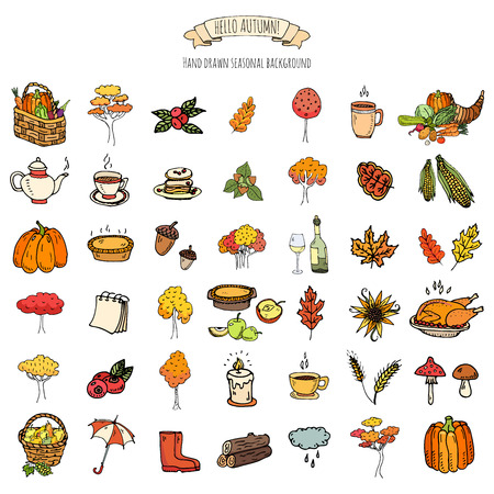 corn flower: Hand drawn doodle Thanksgiving icons set illustration autumn symbols collection