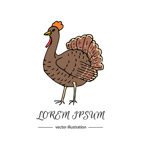 Hand drawn doodle cute Turkey icon. Vector illustration isolated autumn holiday symbol collection. Cartoon celebration element: bird, farm bird animal, Vector farm animal. Turkey vector illustration.
