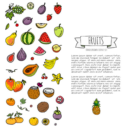 Hand drawn doodle fruits and berries icons set Vector illustration seasonal food symbols collection Cartoon various types of tropical fruits on white background Sketch style. Pineapple, papaya