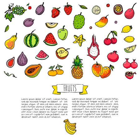 손으로 그린 낙서 과일 아이콘을 설정 벡터 일러스트 레이 션 계절 과일 기호 컬렉션 만화 다른 종류의 과일 흰색 배경에 열 대 과일의 다양 한 유형 스