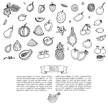 green papaya salad: Hand drawn doodle fruits icons set Vector illustration seasonal fruits symbols collection Cartoon different kinds of fruits Various types of tropical fruits on white background Sketch style Fruit