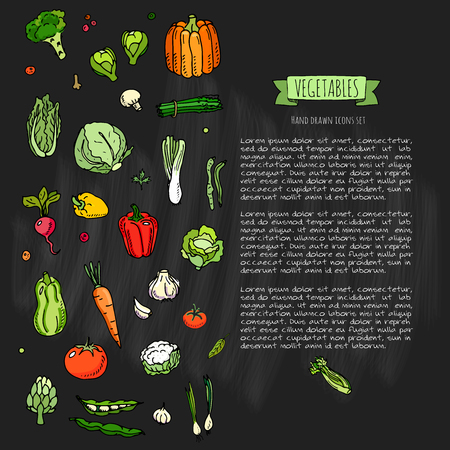 손으로 그린 낙서 야채 아이콘 세트 벡터 일러스트 레이 션 계절 채소 기호 컬렉션 만화 다른 종류의 야채 흰색 배경에 다양 한 유형 스케치 스타일 일러스트