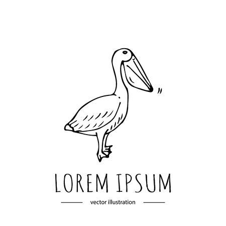 Hand getrokken doodle Pelican pictogram geïsoleerd op een witte achtergrond. Vector illustratie. Dierentuin gerelateerde pictogram - kleurrijke vogel. Schetsmatig element. Cartoon wilde dieren Wing snavel nek, benen vinnen Stock Illustratie