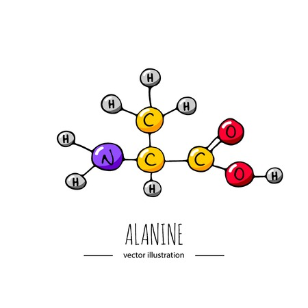 Hand drawn doodle Alanine chemical formula icon. Vettoriali