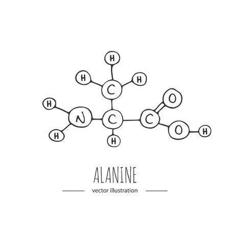 Hand drawn doodle Alanine chemical formula icon Vector illustration.