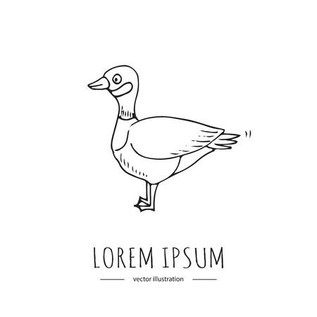手描き落書きカナダガチョウアイコンベクトルイラストは、白い背景漫画要素鳥にシンボルを分離しました。アヒル。長い首、短い足とウェブベッ  イラスト・ベクター素材