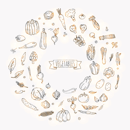 Hand drawn doodle vegetables icons set Vector illustration seasonal vegetable symbols collection Cartoon different kinds of vegetables Various types of vegetables on white background Sketchy style 스톡 콘텐츠 - 100314317