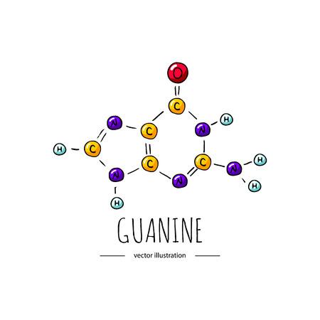 Doodle dessiné main Icône de formule chimique Guanine Illustration vectorielle Symbole de base azotée Dessin animé croquis élément du génome composant ADN sur fond blanc Atome de carbone Molécule d'azote Oxyde de liaison