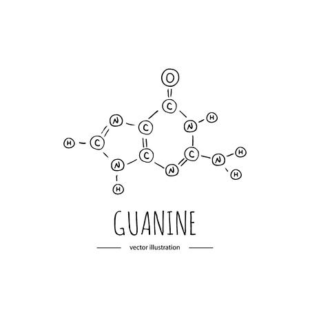 Hand drawn doodle Guanine chemical formula icon Vector illustration nitrogenous base symbol Cartoon sketch genome element DNA component on white background Carbon Atom Nitrogen Molecule Bond Oxygen Standard-Bild - 100759980