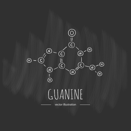 Hand drawn doodle Guanine chemical formula icon Vector illustration nitrogenous base symbol Cartoon sketch genome element DNA component on chalkboard background Carbon Atom Nitrogen Molecule Bond