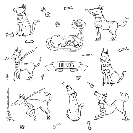 Hand drawn doodle set of cute dogs icons Vector illustration set. Cartoon normal everyday home pets activities symbols. Sketchy puppy collection: howl, play with ball, sleep, walk, eat, ask for food Illustration