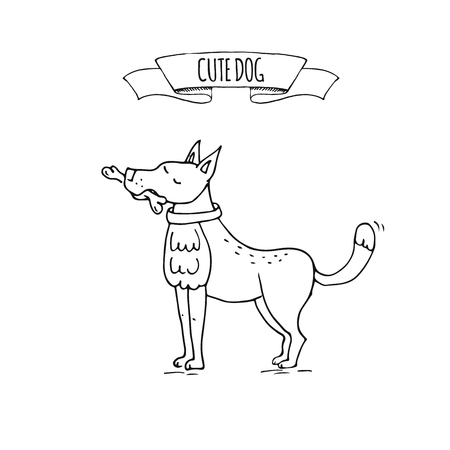Hand drawn doodle cute dog icon Vector illustration Cartoon normal everyday home pets activities symbol. Sketchy puppy asking for food holding bone, healthy lifestyle for funny domestic animal