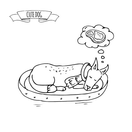 Hand drawn doodle set of cute sleeping dog icon Vector illustration set. Cartoon normal everyday home pets activity symbol Sketchy laying puppy on a dog's soft bed dreaming about meat, steak