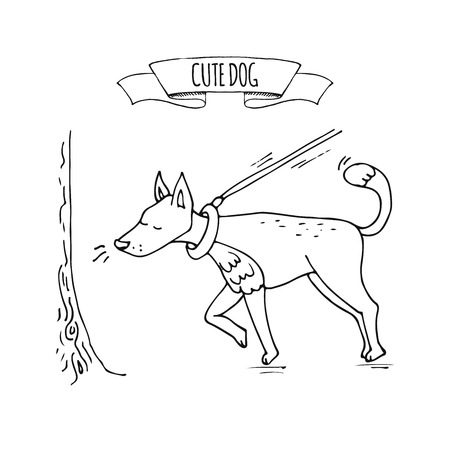 Hand drawn doodle image of cute dog on a leash sniffing tree icon Vector illustration set. Cartoon normal everyday home pets activities symbol. Sketchy curious puppy walk Illustration