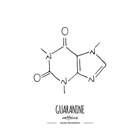 Hand drawn doodle Caffeine chemical formula icon Vector illustration Cartoon molecule Sketch Guaranine symbol molecular structure Structural scientific hormone formula isolated on white background Vetores