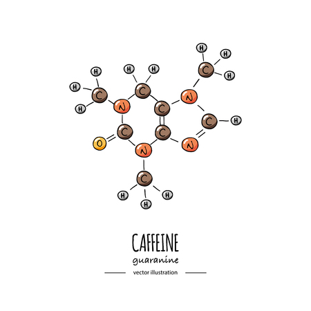 Hand getrokken doodle cafeïne chemische formule pictogram vectorillustratie Cartoon molecuul schets guaranine symbool moleculaire structuur structurele wetenschappelijke hormoon formule geïsoleerd op witte achtergrond Vector Illustratie