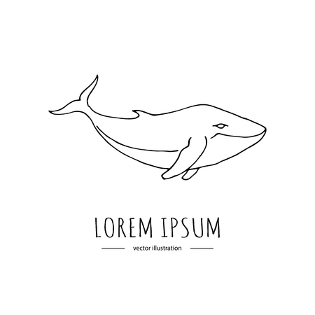 Hand drawn doodle Blue Whale icon Vector illustration isolated symbol on white background Sea life Cartoon outlined fish element for tattoo and printing Aquatic animal from the sea or ocean Ilustracja